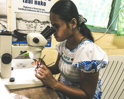 field entomology in kiribati